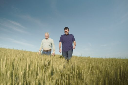 How We Source Chickpeas: A Multi-Generational Story from our Partners